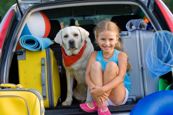 Dog and girl in back of vehicle road trip