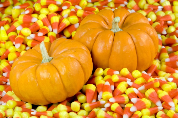 Two Orange Pumpkins in Candy Corn
