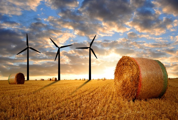 Wind Turbines on a Farm Bales of Straw