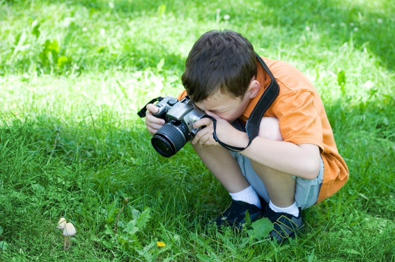 Kid Boy Photographer and Camera Taking a Picture of Mushrooms