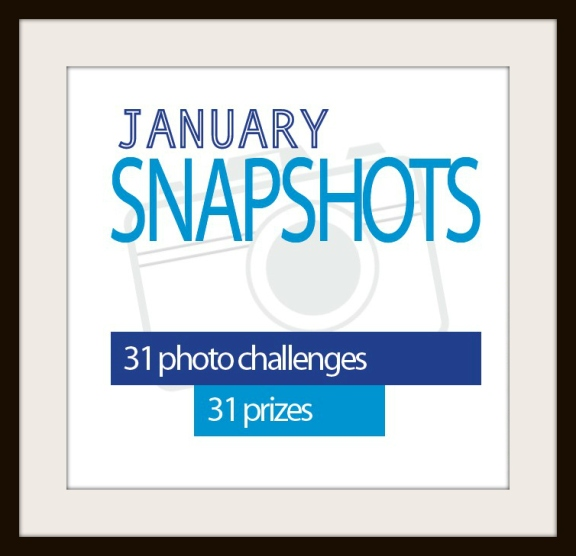 January Snapshots Blog Photo Challenge Posterjack