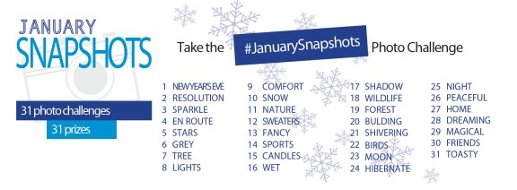 Photo Challenge List Posterjack January Snapshots Contest