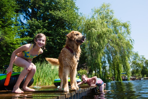 Kids playing with their Golden Retriever on a dock in a lake