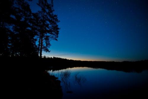 Evening Light Landscape of Lake, Trees, Reflection