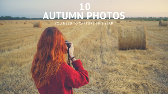 autumn fall photography