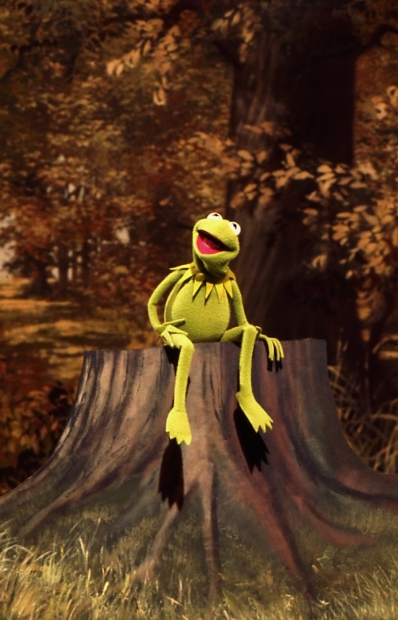Kermit the Frog Signing About Being Green
