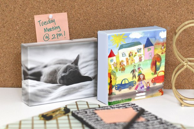 Posterjack Canvas Minis displaying kid's artwork and a cat photo in office environment
